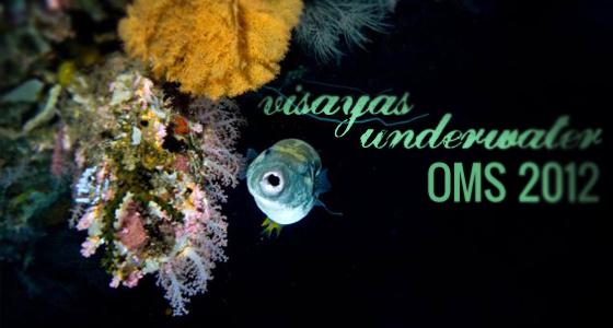 Visayas Underwater OMS 2012